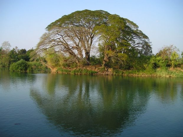Découvrir le Laos au fil du Mékong