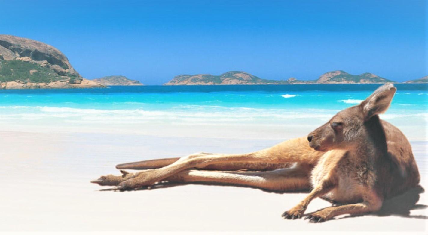 Un voyage de rêve en Australie